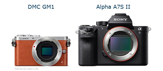 Panasonic dmc gm 1 vs Sony alpha a7s ii