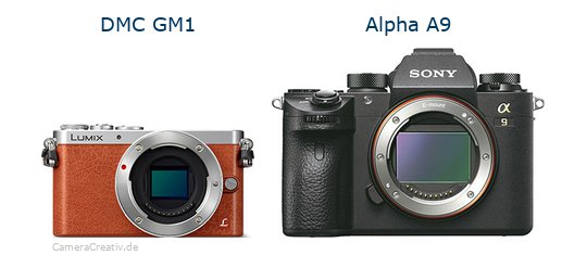 Panasonic dmc gm 1 vs Sony alpha a9