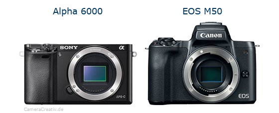 Sony alpha 6000 vs Canon eos m50