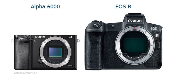 Sony alpha 6000 vs Canon eos r