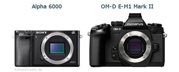 Sony alpha 6000 vs Olympus om d e m1 mark ii