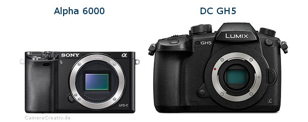 Sony alpha 6000 vs Panasonic dc gh 5