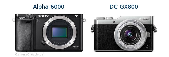 Sony alpha 6000 vs Panasonic dc gx 800