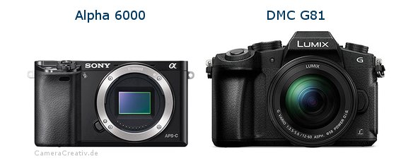 Sony alpha 6000 vs Panasonic dmc g 81