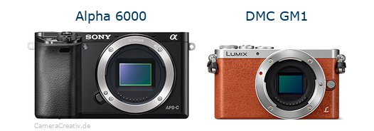 Sony alpha 6000 vs Panasonic dmc gm 1