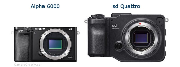 Sony alpha 6000 vs Sigma sd quattro