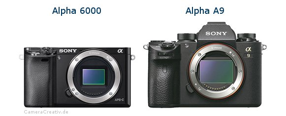 Sony alpha 6000 vs Sony alpha a9