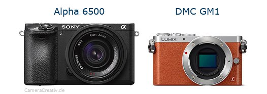 Sony alpha 6500 vs Panasonic dmc gm 1